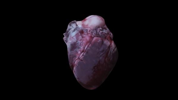 04.skifte_heart